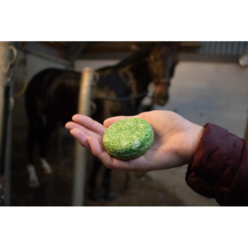 Puppy Kong Small