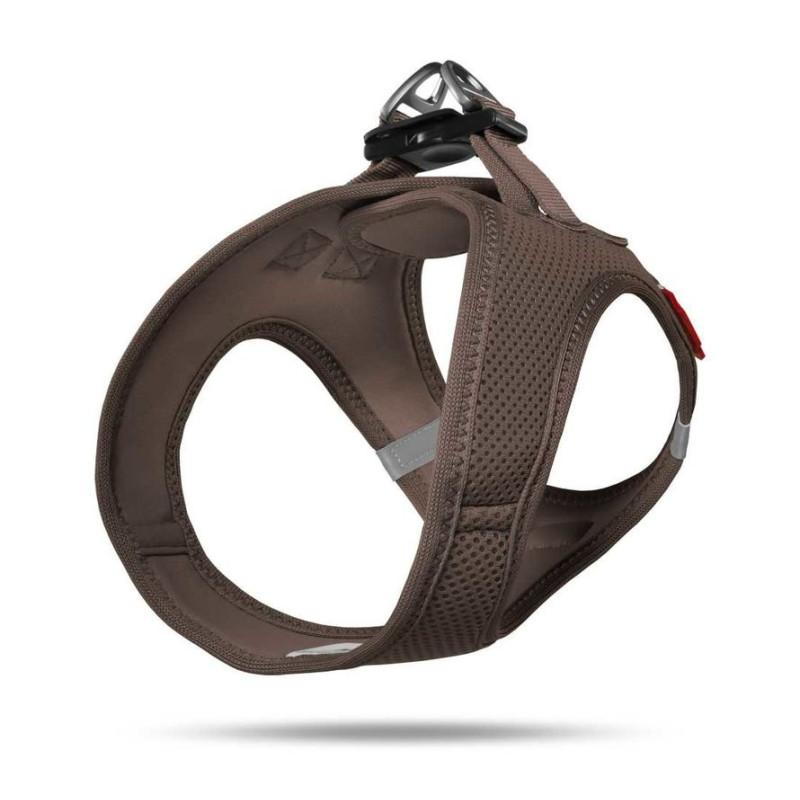 Bento Kronen Kitten 3 kg