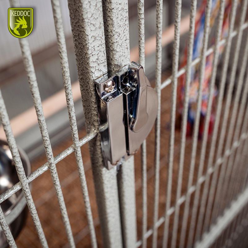 Glasterrarium 40x40x50 standaard