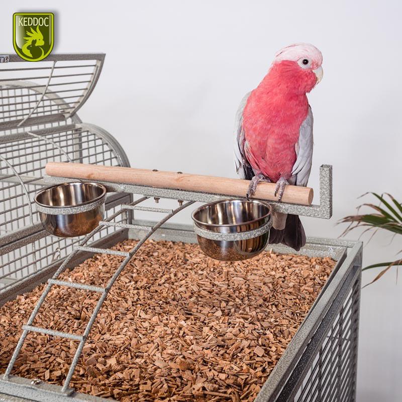 Glasterrarium 60x30x40 standaard