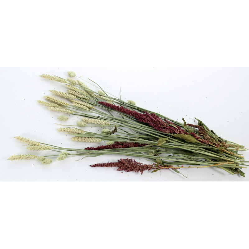 Kattenbak Afvalzakken Plastic Groot 10st