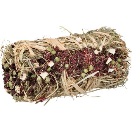 PeeWee Startpakket Kattenbak Ecodome Bruin/Ivoor