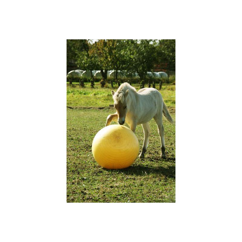 Flesautomaat Glas Pot 1L.