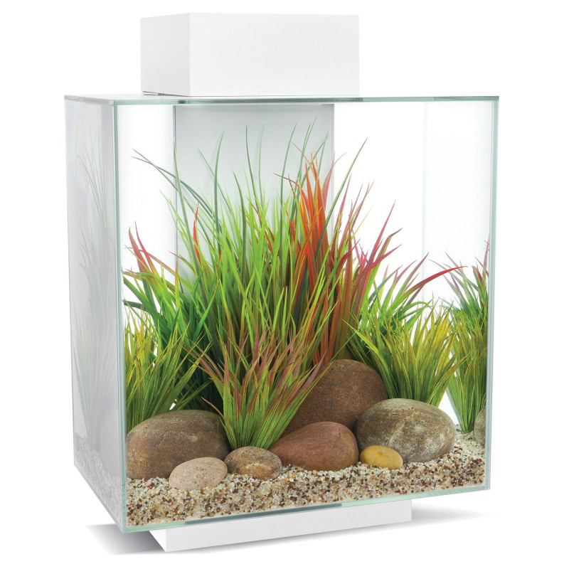 Orijen Freeze-Dried Dog Tundra 12 Medaillons