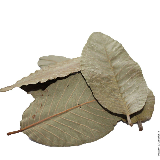 Versele Laga Cuni Fit Pure Konijnenkorrel 5kg