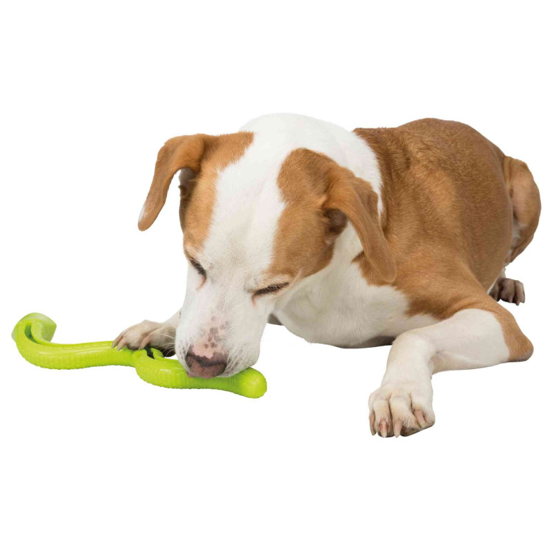 DBL Houten Beware Of The Dog