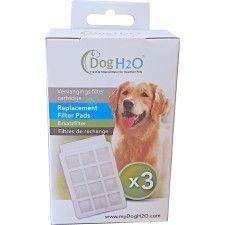 Wenskaart Basset Hound Big Ears