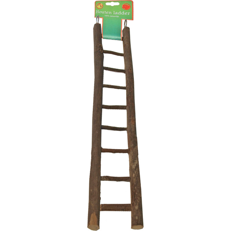 Black big circle paw