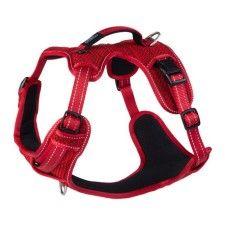 Hikari Friend Large 10kg