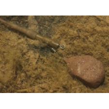Applaws Quick Kipfilet & Asperges